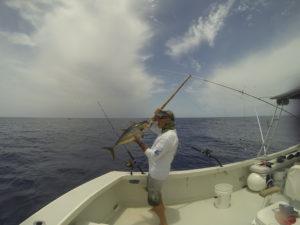Tuna Fishing Yellowfin
